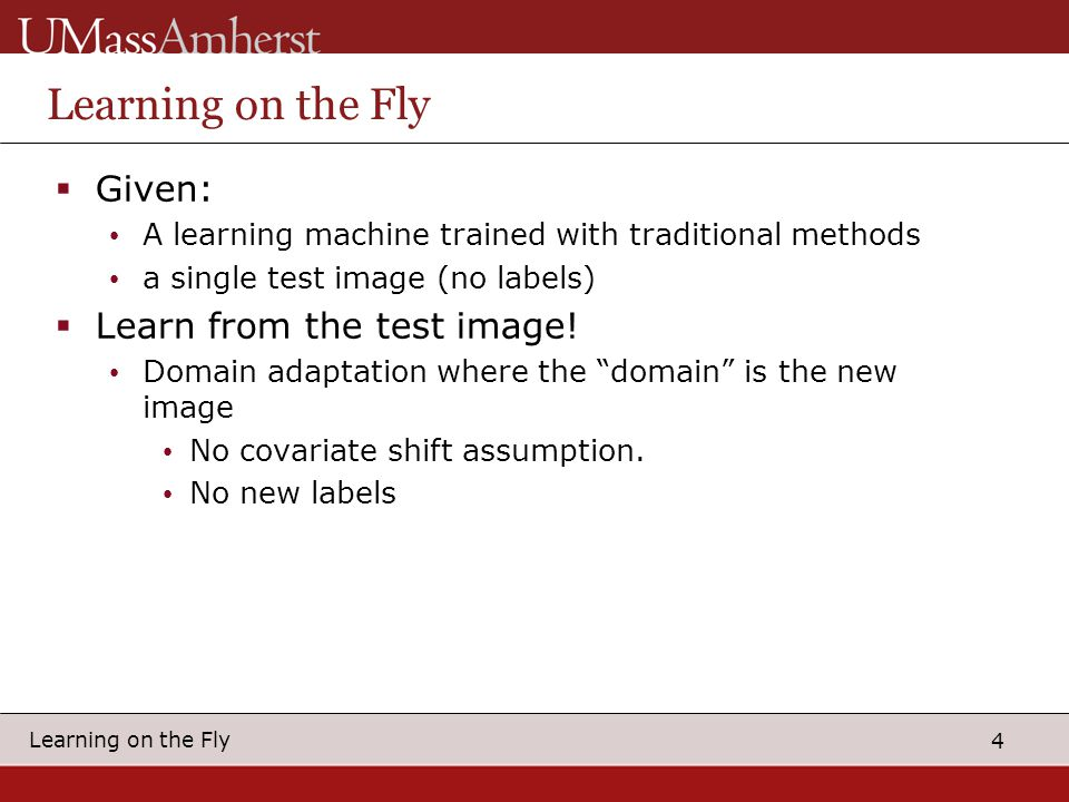 4 Learning on the Fly  Given: A learning machine trained with traditional methods a single test image (no labels)  Learn from the test image.