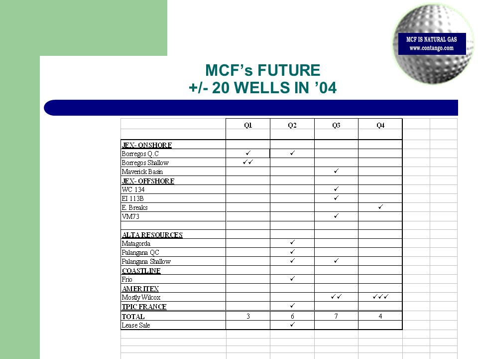 MCF's FUTURE +/- 20 WELLS IN '04