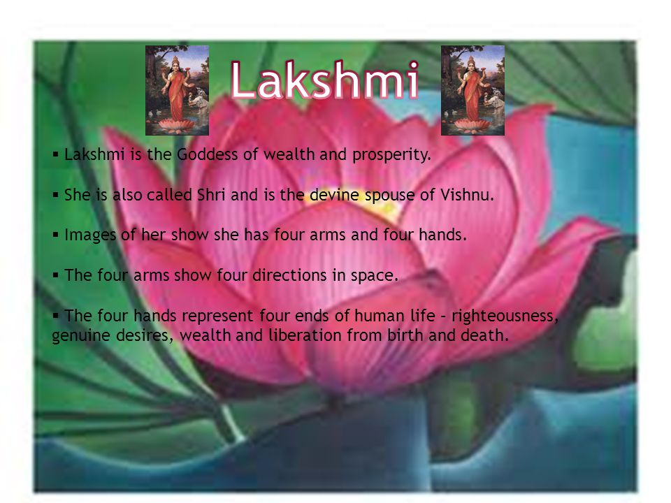  Lakshmi is the Goddess of wealth and prosperity.
