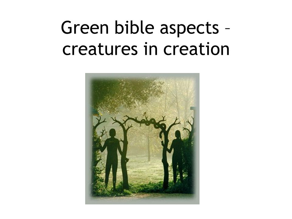 Green bible aspects – creatures in creation