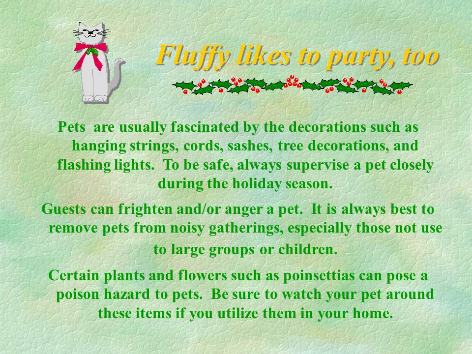 Fluffy likes to party, too Pets are usually fascinated by the decorations such as hanging strings, cords, sashes, tree decorations, and flashing lights.
