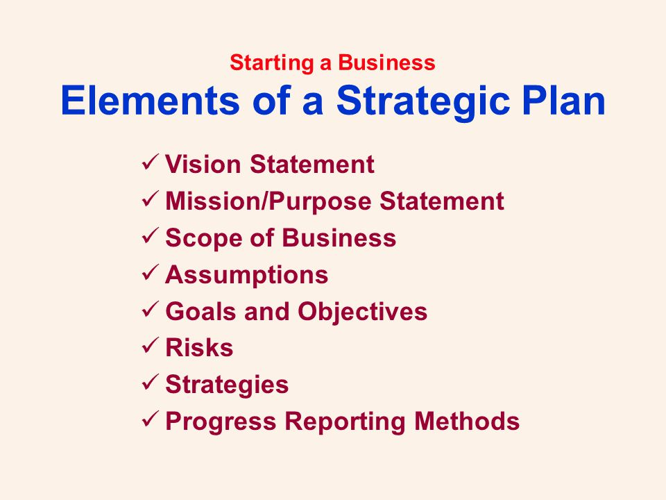 Starting a Business Elements of a Strategic Plan Vision Statement Mission/Purpose Statement Scope of Business Assumptions Goals and Objectives Risks Strategies Progress Reporting Methods