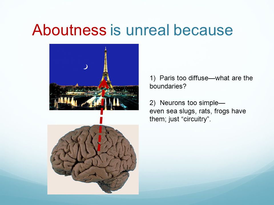 Aboutness is unreal because 1) Paris too diffuse—what are the boundaries.