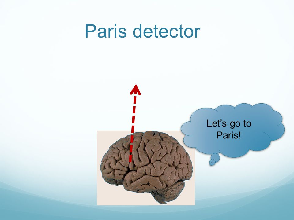 Paris detector Let's go to Paris!
