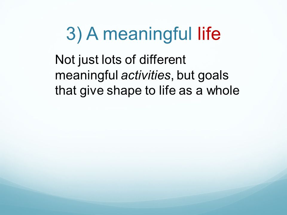 3) A meaningful life Not just lots of different meaningful activities, but goals that give shape to life as a whole