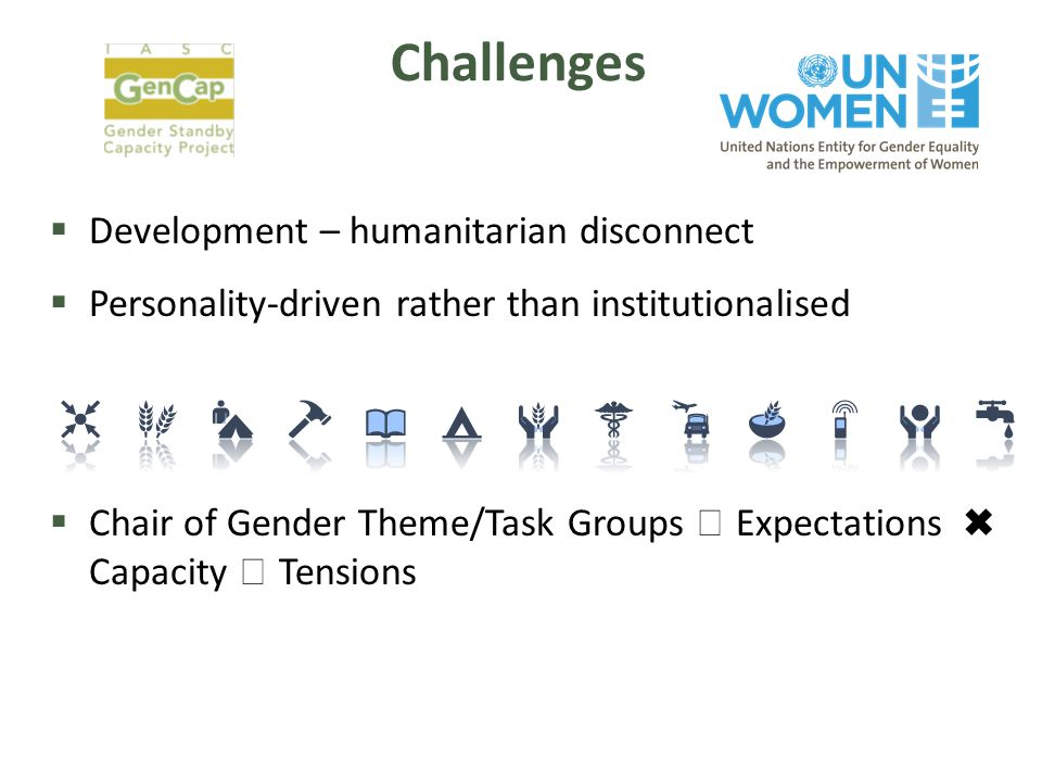 Challenges  Development – humanitarian disconnect  Personality-driven rather than institutionalised  Chair of Gender Theme/Task Groups  Expectations ✖ Capacity  Tensions