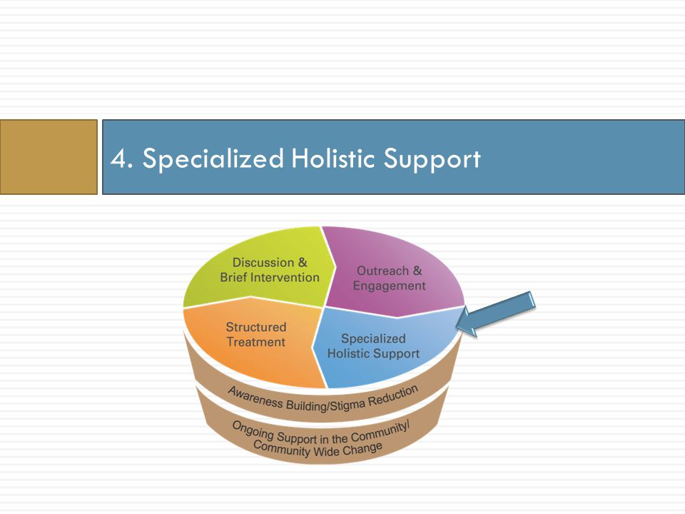 4. Specialized Holistic Support