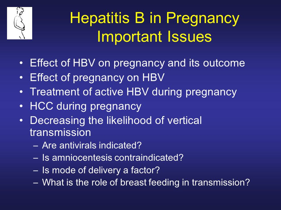 Hepatitis B in Pregnancy Important Issues Effect of HBV on pregnancy and its outcome Effect of pregnancy on HBV Treatment of active HBV during pregnancy HCC during pregnancy Decreasing the likelihood of vertical transmission –Are antivirals indicated.