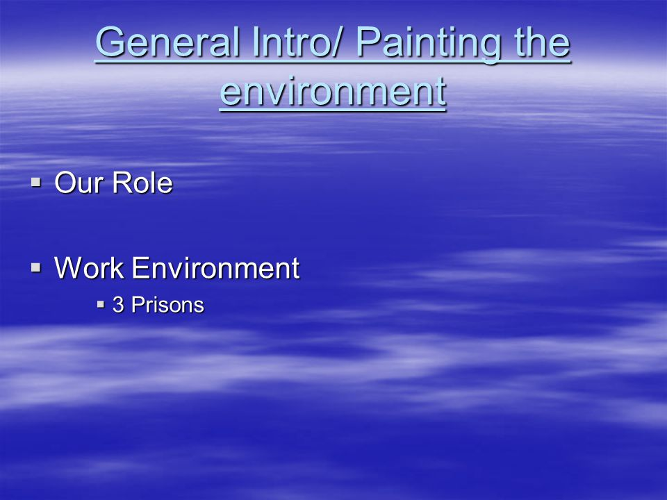 General Intro/ Painting the environment  Our Role  Work Environment  3 Prisons