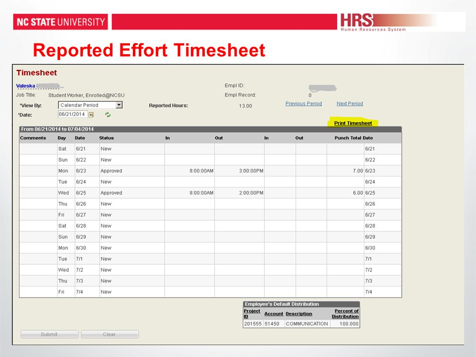 Reported Effort Timesheet