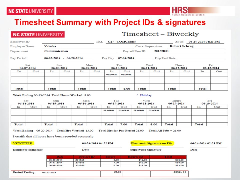 Timesheet Summary with Project IDs & signatures
