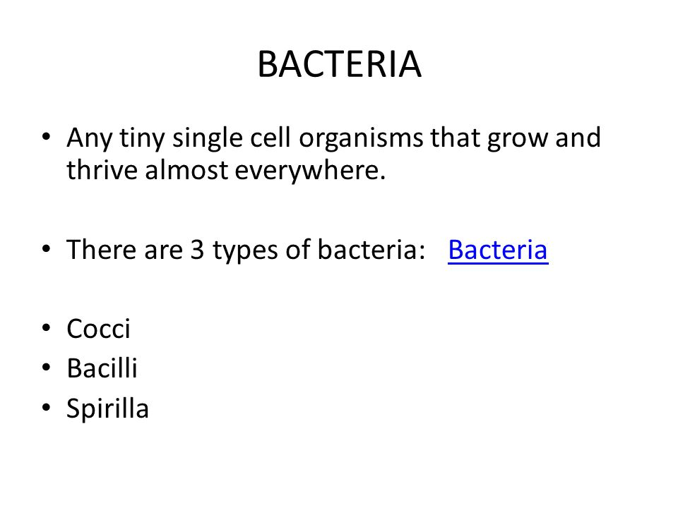 BACTERIA Any tiny single cell organisms that grow and thrive almost everywhere.