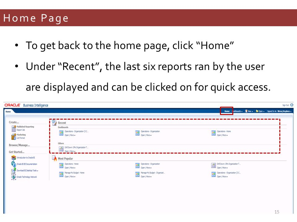 Home Page To get back to the home page, click Home Under Recent , the last six reports ran by the user are displayed and can be clicked on for quick access.