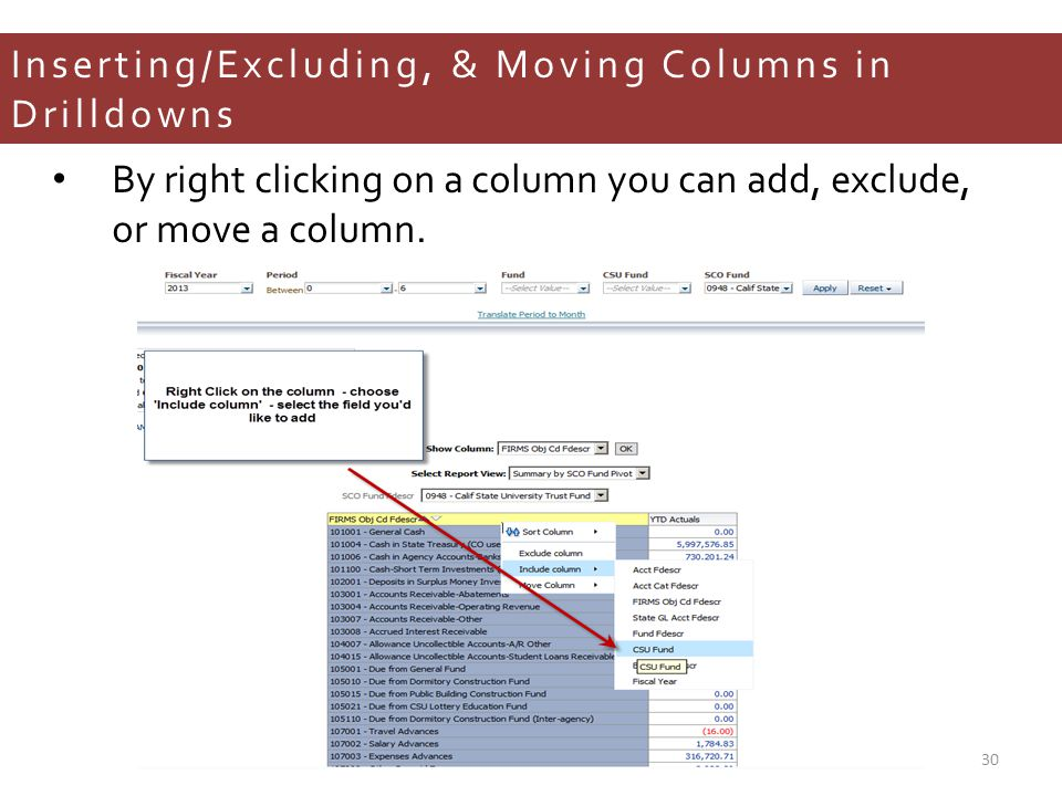 Inserting/Excluding, & Moving Columns in Drilldowns By right clicking on a column you can add, exclude, or move a column.