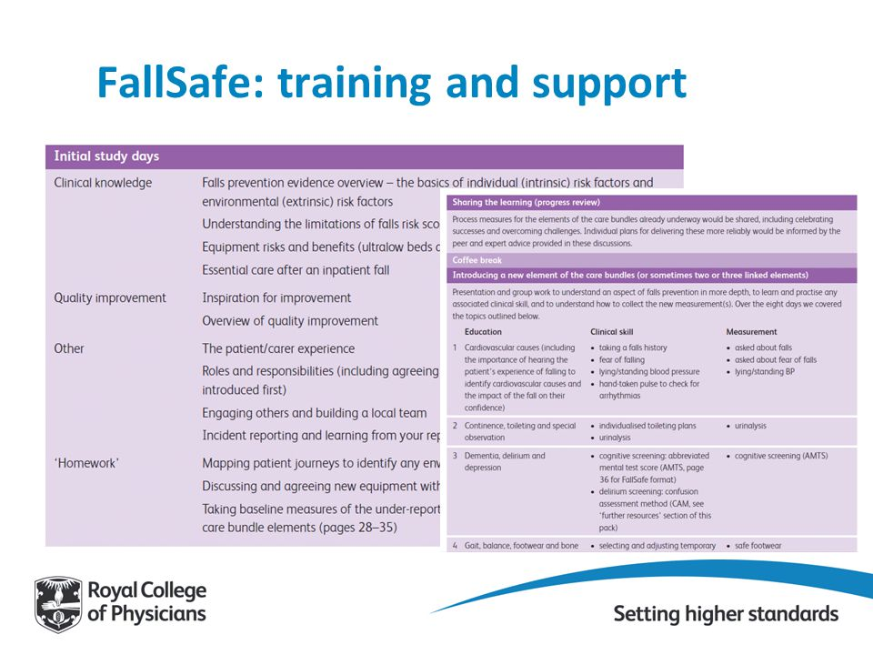 FallSafe: training and support