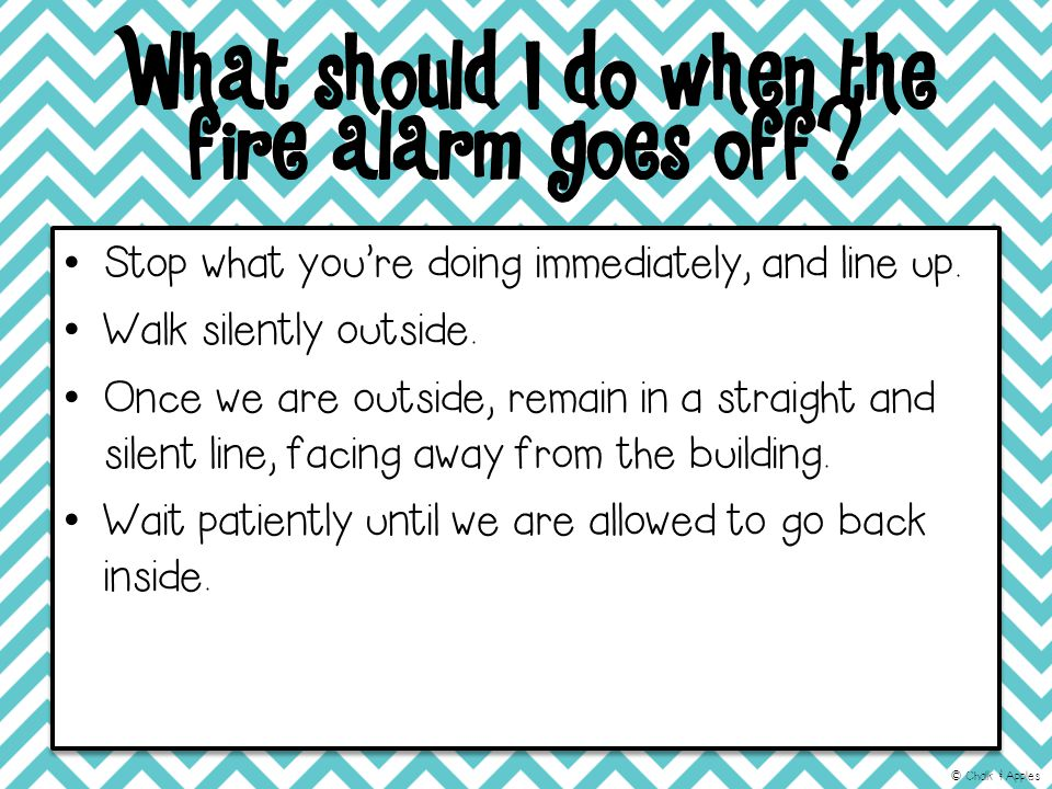 What should I do when the fire alarm goes off. Stop what you're doing immediately, and line up.