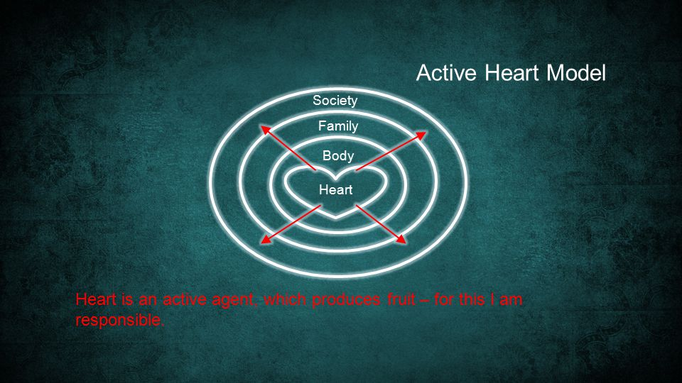Heart Society Family Body Heart is an active agent, which produces fruit – for this I am responsible.
