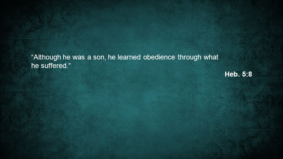 Although he was a son, he learned obedience through what he suffered. Heb. 5:8