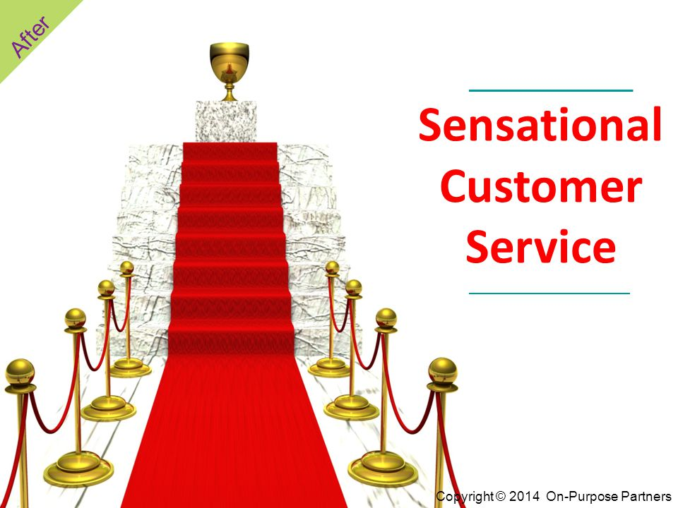Sensational Customer Service After Copyright © 2014 On-Purpose Partners