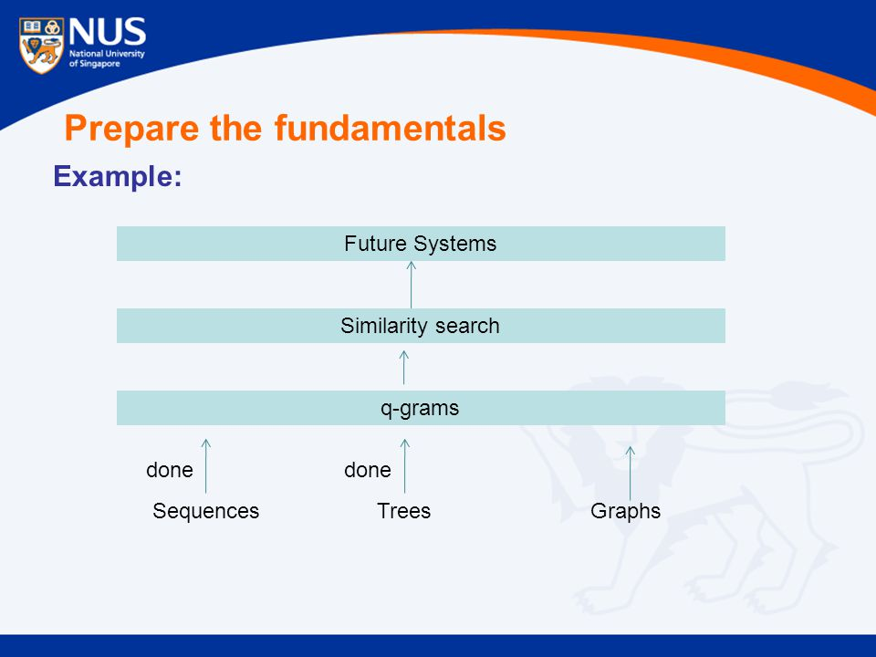 Prepare the fundamentals Example: Sequences Trees Graphs q-grams Similarity search done Future Systems