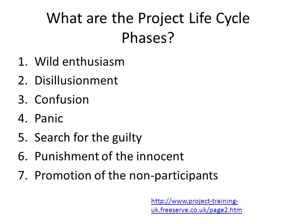 What are the Project Life Cycle Phases.