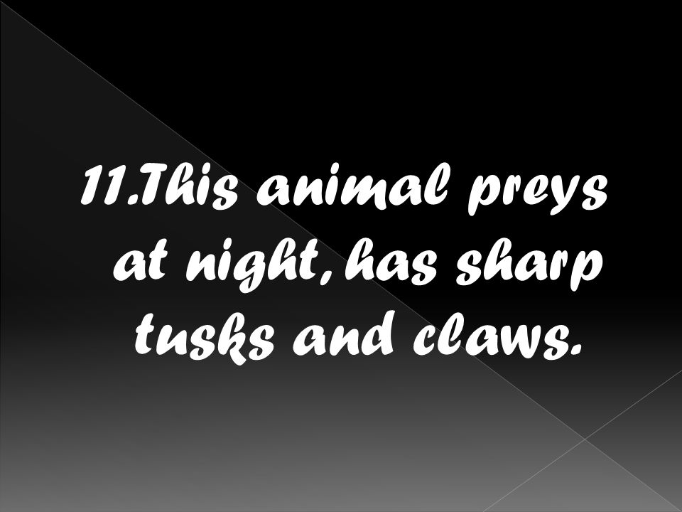 11.This animal preys at night, has sharp tusks and claws.