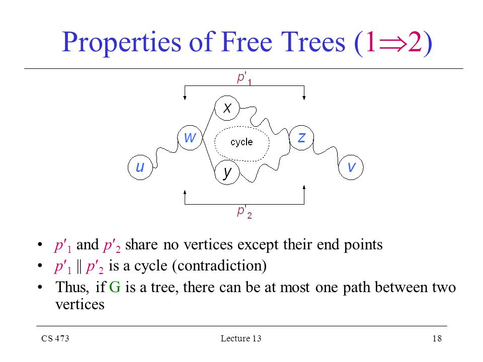 CS 473Lecture 1318 Properties of Free Trees (1  2) p 1 and p 2 share no vertices except their end points p 1 || p 2 is a cycle (contradiction) Thus, if G is a tree, there can be at most one path between two vertices