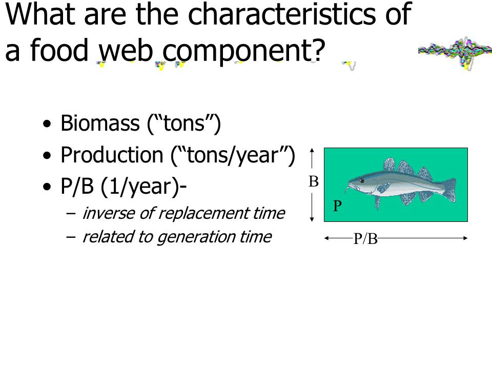 Biomass ( tons ) Production ( tons/year ) P/B (1/year)- –inverse of replacement time –related to generation time B P/B P