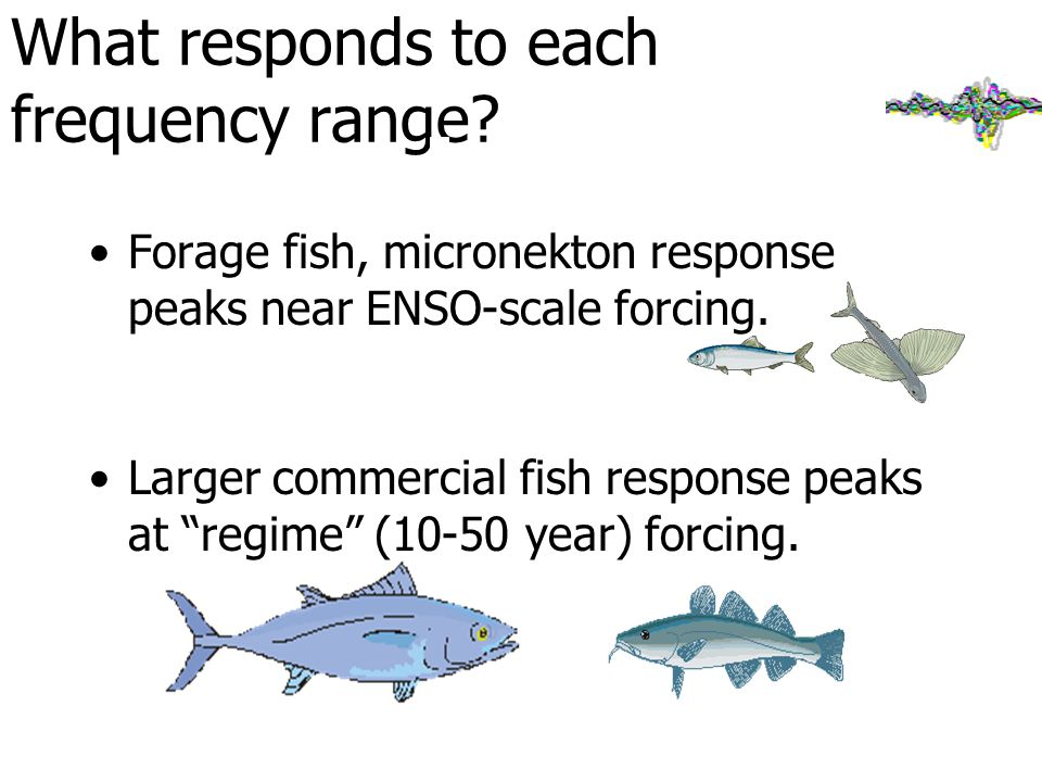 What responds to each frequency range.
