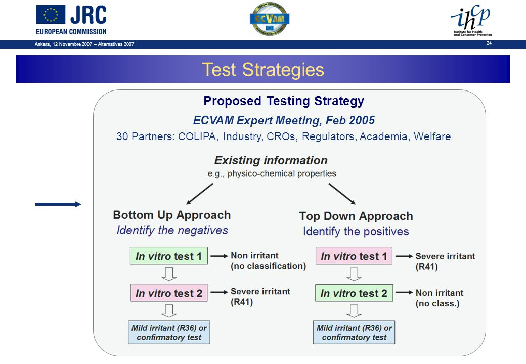 Ankara, 12 Novembre 2007 – Alternatives 2007 24 Test Strategies Proposed Testing Strategy ECVAM Expert Meeting, Feb 2005 30 Partners: COLIPA, Industry, CROs, Regulators, Academia, Welfare