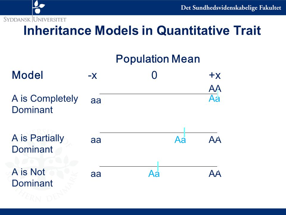 Population Mean Model-x 0+x A is Completely Dominant aa AA Aa A is Partially Dominant aa AaAA A is Not Dominant aaAaAA Inheritance Models in Quantitative Trait