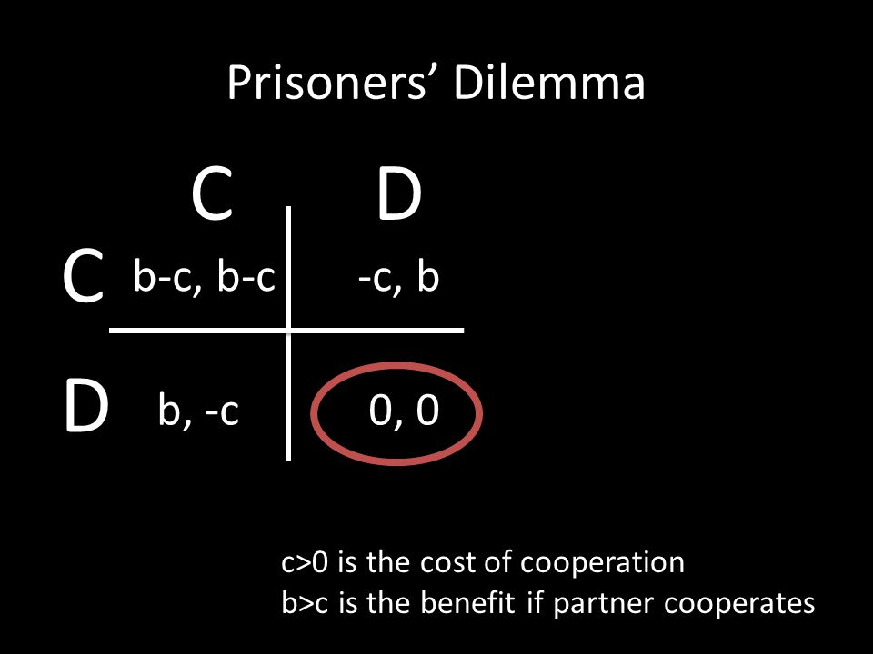 Prisoners' Dilemma c>0 is the cost of cooperation b>c is the benefit if partner cooperates b-c, b-c-c, b b, -c0, 0 C D CD