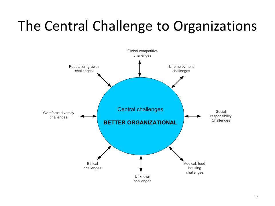 The Central Challenge to Organizations 7