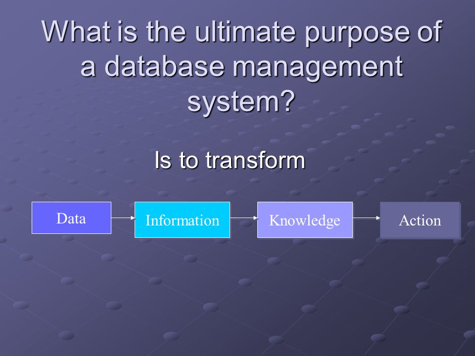 What is the ultimate purpose of a database management system.