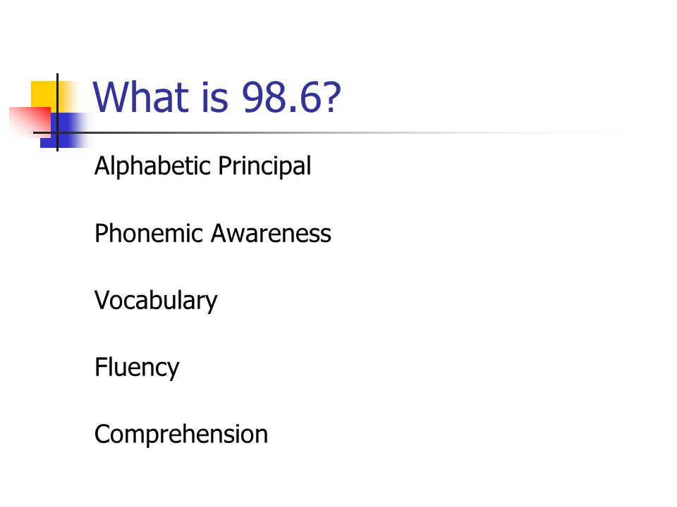 What is 98.6 Alphabetic Principal Phonemic Awareness Vocabulary Fluency Comprehension