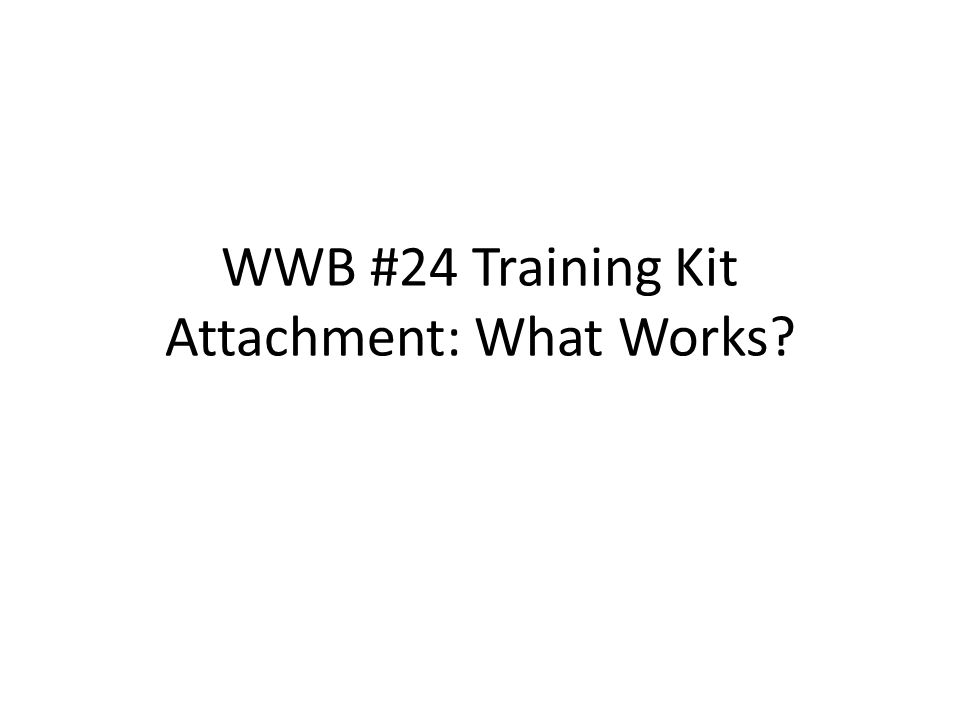 WWB #24 Training Kit Attachment: What Works