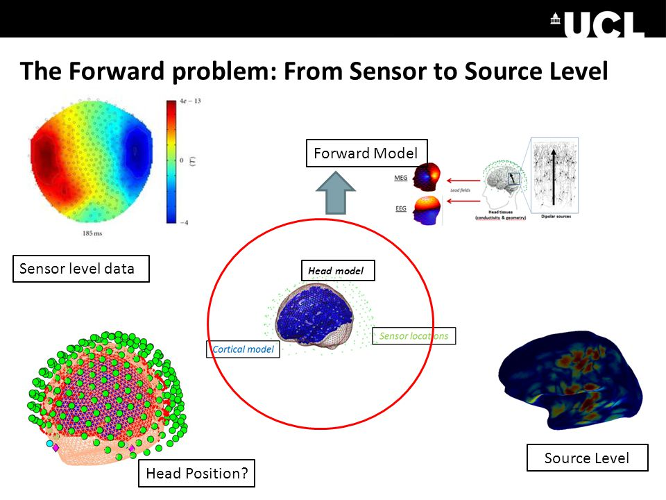 The Forward problem: From Sensor to Source Level Head model Sensor level data Head Position.