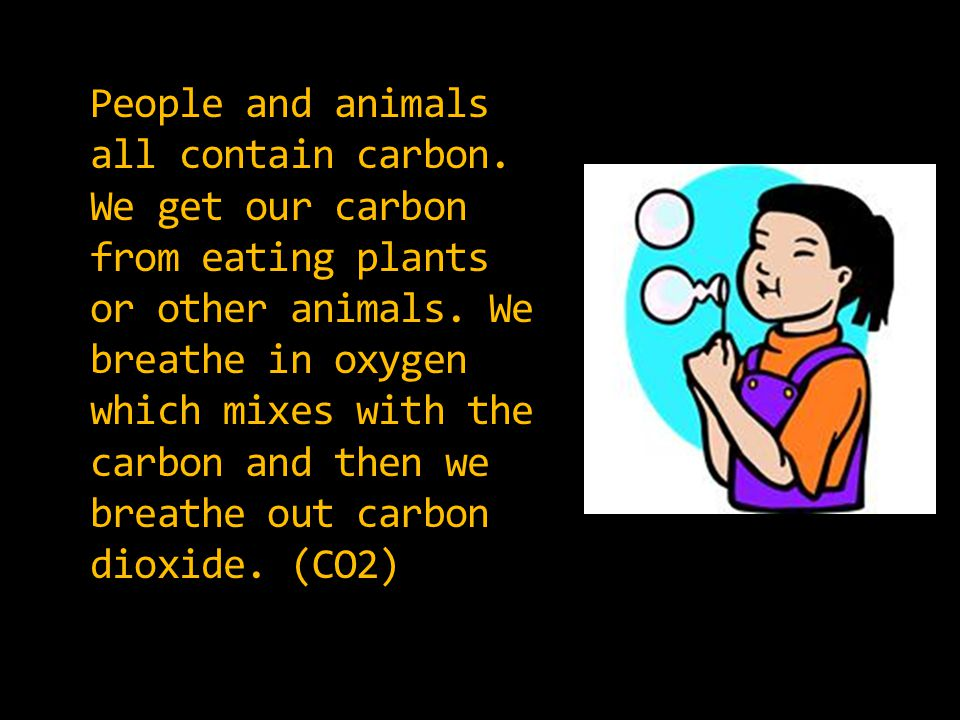 People and animals all contain carbon. We get our carbon from eating plants or other animals.
