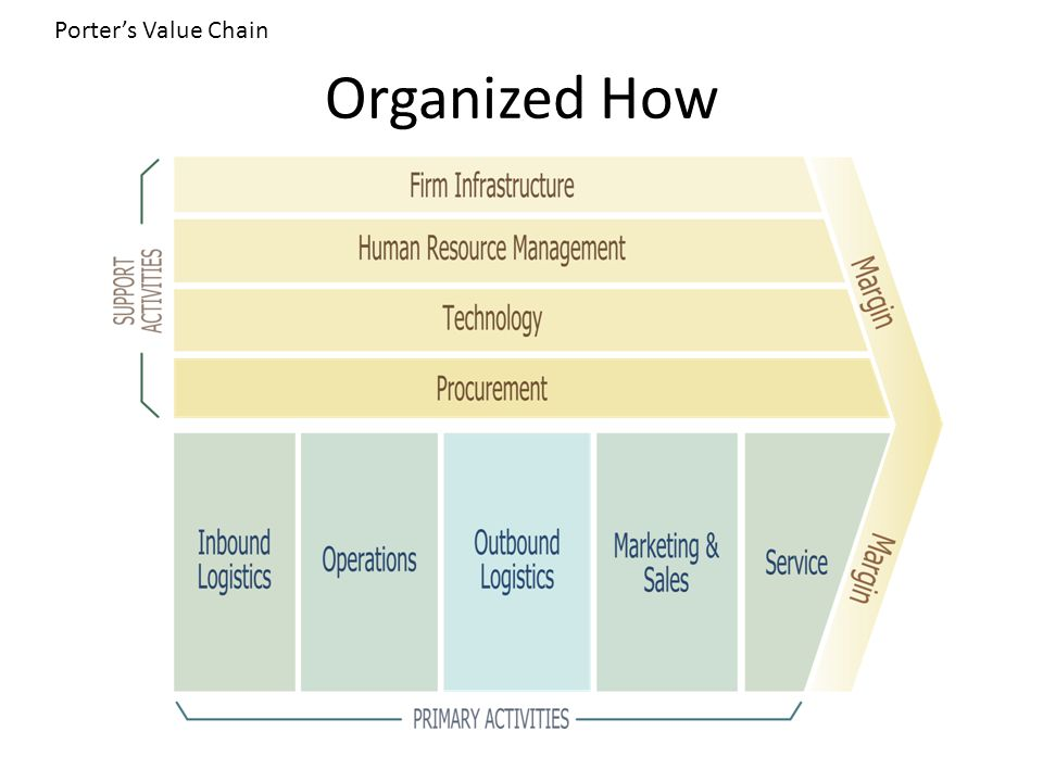 Organized How Porter's Value Chain