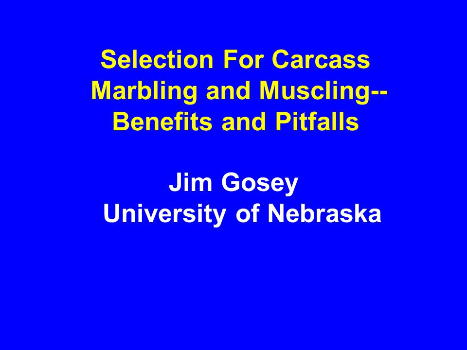 Selection For Carcass Marbling and Muscling-- Benefits and Pitfalls Jim Gosey University of Nebraska