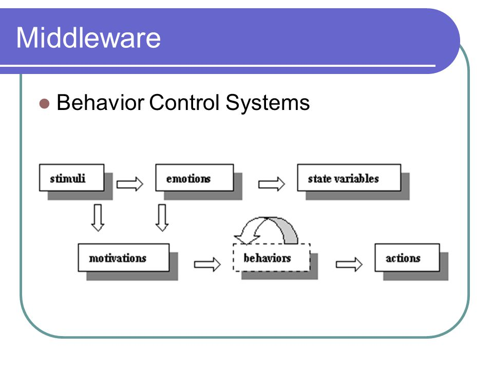 Middleware Behavior Control Systems