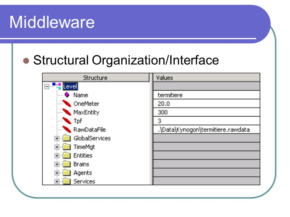 Middleware Structural Organization/Interface