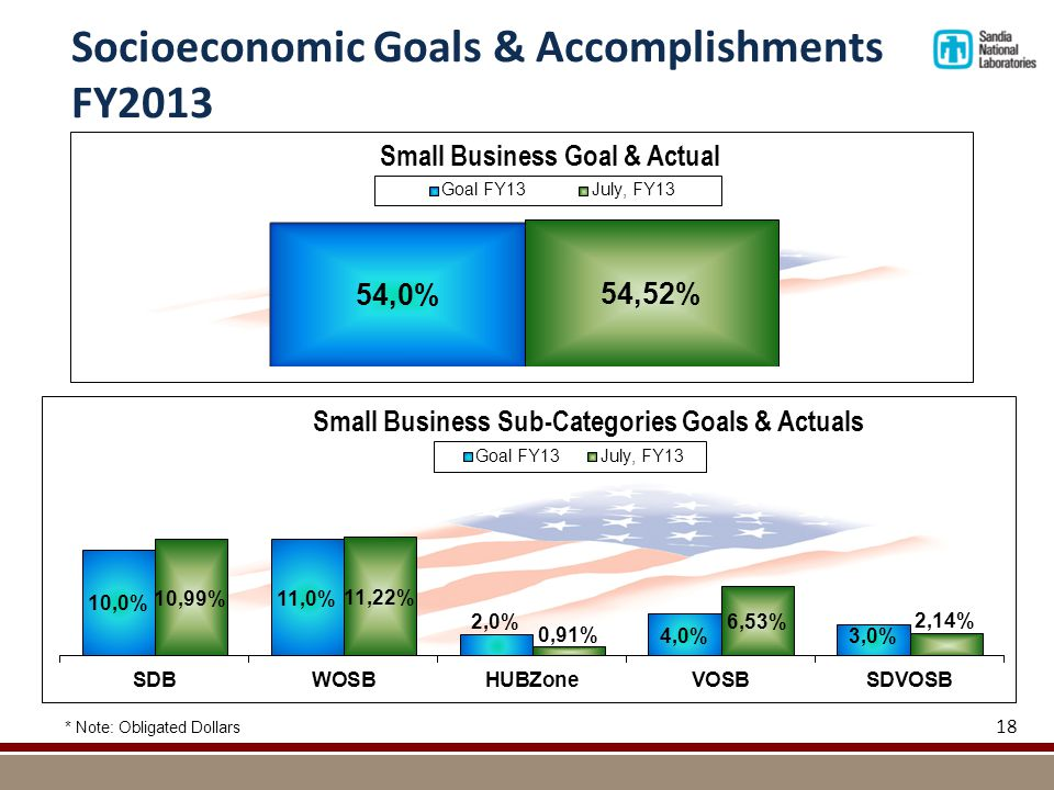 Socioeconomic Goals & Accomplishments FY2013 * Note: Obligated Dollars 18