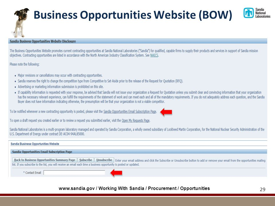 Business Opportunities Website (BOW) 29 www.sandia.gov / Working With Sandia / Procurement / Opportunities