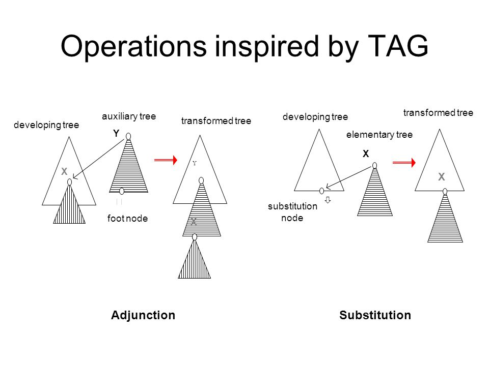 Operations inspired by TAG X Y  X Y developing tree auxiliary tree transformed tree foot node Adjunction X X substitution node developing tree elementary tree transformed tree  Substitution