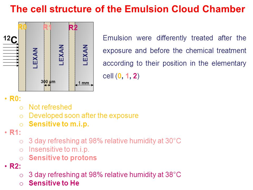The cell structure of the Emulsion Cloud Chamber LEXAN 12 C 1 mm 300 μm Emulsion were differently treated after the exposure and before the chemical treatment according to their position in the elementary cell (0, 1, 2) R0: o Not refreshed o Developed soon after the exposure o Sensitive to m.i.p.
