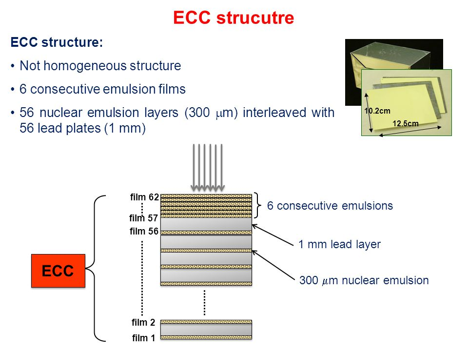 ECC strucutre ECC structure: Not homogeneous structure 6 consecutive emulsion films 56 nuclear emulsion layers (300  m) interleaved with 56 lead plates (1 mm) 300  m nuclear emulsion 6 consecutive emulsions 1 mm lead layer ECC 12.5cm 10.2cm film 1 film 2 film 56 film 57 film 62