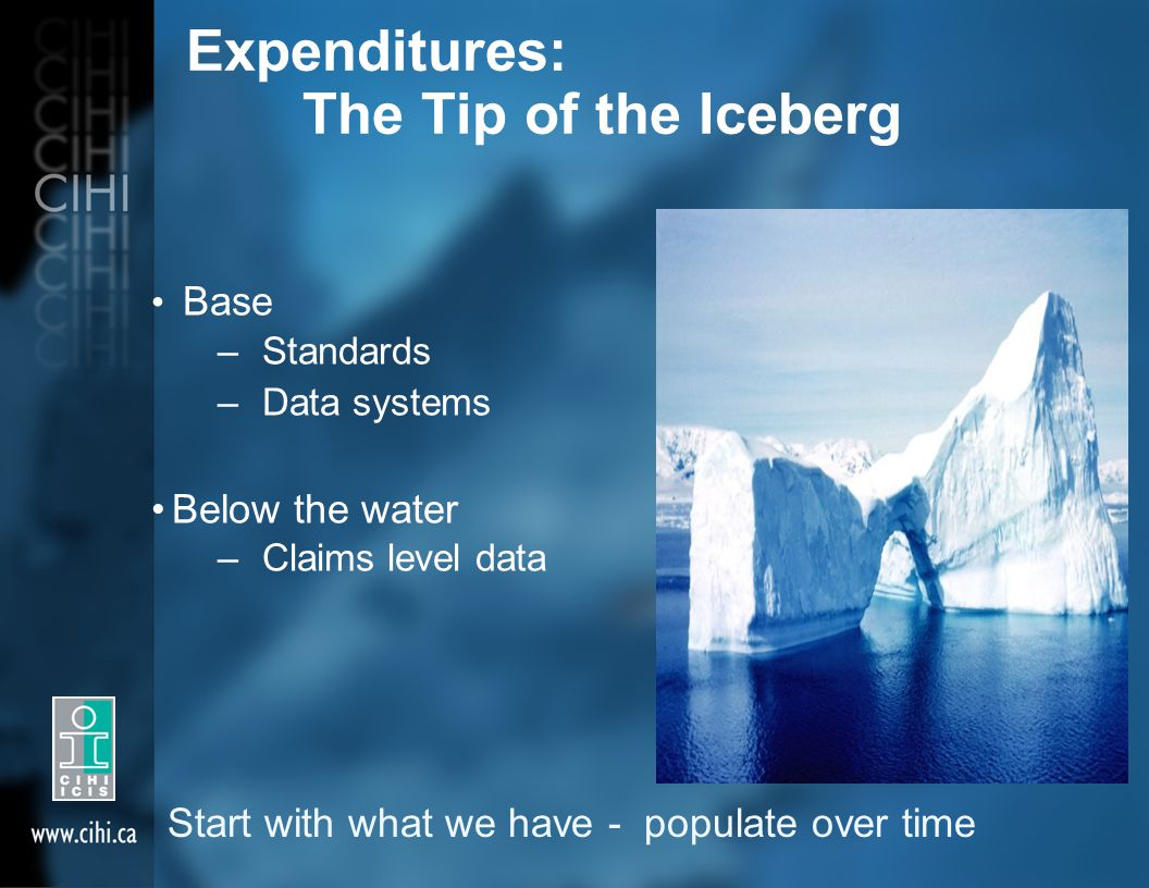 Expenditures: The Tip of the Iceberg Base –Standards –Data systems Below the water –Claims level data Start with what we have - populate over time