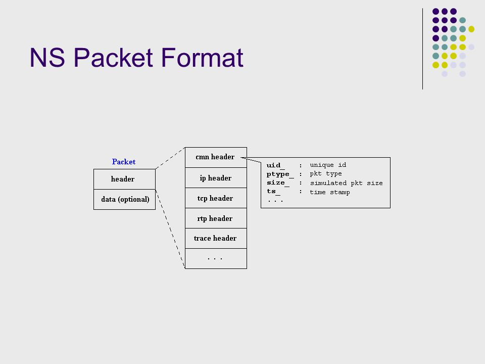 NS Packet Format