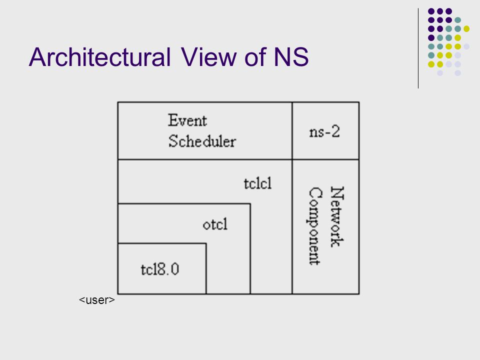 Architectural View of NS